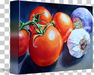 Bush Tomato Still Life Photography Gallery Wrap PNG