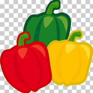 Chili Pepper Bell Pepper Capsicum Vegetable PNG