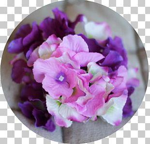 Violet Hydrangea Lilac Purple Color PNG