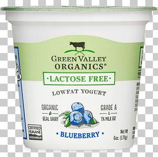 Yoghurt Milk Cream Activia Dairy Products PNG