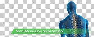 Vertebral Column Neurosurgery Spinal Cord Medicine PNG