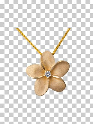 Necklace Jewellery Colored Gold Charms & Pendants Bracelet PNG