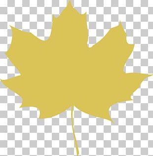 Maple Leaf Autumn Leaf Color Computer Icons PNG