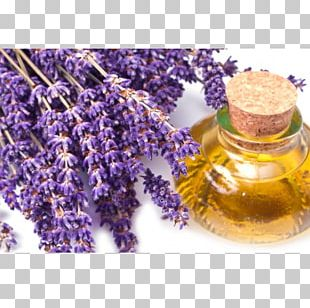 Lavender Oil Essential Oil Foot Odor PNG