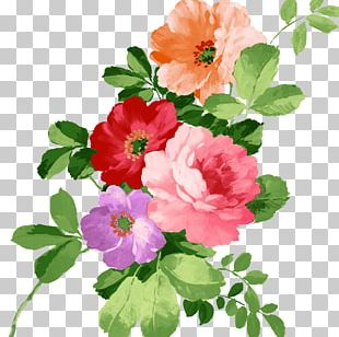 Flower Painting PNG