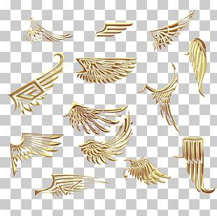 Metal Wing Resource PNG