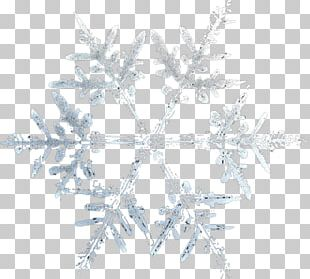 Snowflake Adobe Fireworks PNG