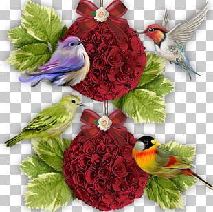 Floral Design Cut Flowers Bird Flower Bouquet PNG