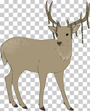 Reindeer White-tailed Deer Elk Cattle PNG