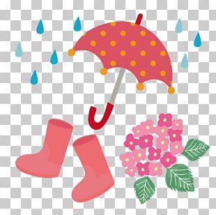 East Asian Rainy Season French Hydrangea PNG