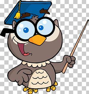 Owl Teacher Education PNG