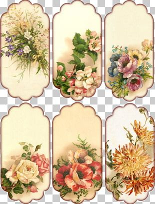Pressed Flower Craft Floral Design Vintage Clothing Paper PNG