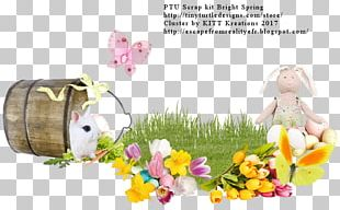Easter Frames Film Frame Photography Scrapbooking PNG