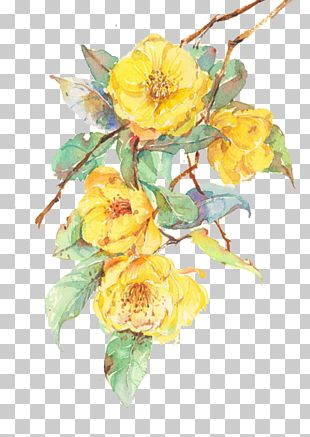 Flower Yellow Computer File PNG