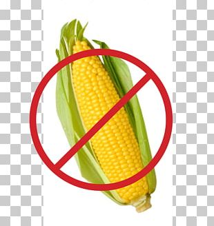 Corn On The Cob Sweet Corn Maize Stock Photography PNG