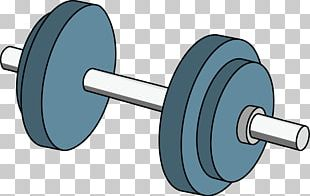 Dumbbell Barbell Weight Training PNG