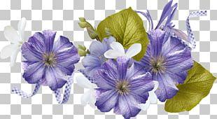Violet Flower Art PNG
