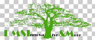 Logo Green Leaf Plant Stem Font PNG
