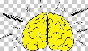 Brain Neuroimaging Neuromarketing Agy Memorization PNG
