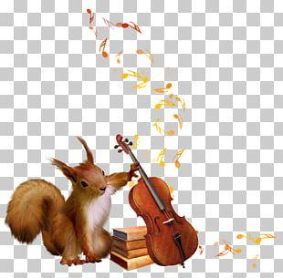 Squirrel Seeks Chipmunk Tree Squirrels PNG