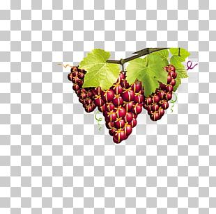 Grape Advertising Poster Sales Promotion PNG