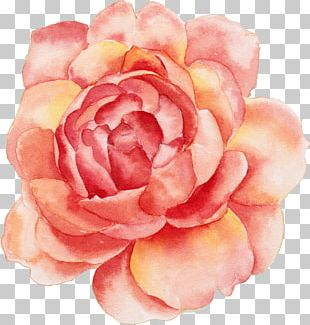 Calendar Flower Printing Canvas Print PNG