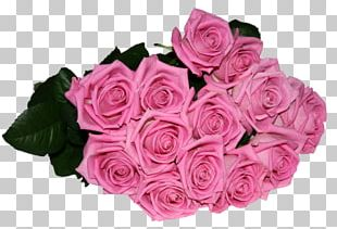 Garden Roses Cabbage Rose Flower Bouquet Cut Flowers Birthday PNG