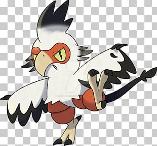 Rooster Chicken Bird Beak Galliformes PNG