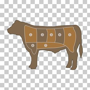 Beef Cattle Angus Cattle Roast Beef Cut Of Beef PNG