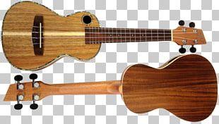 Ukulele Musical Instrument Acoustic Guitar String Instrument PNG