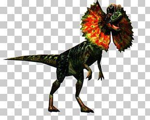 Dilophosaurus Dinosaur Jurassic Park Velociraptor PNG