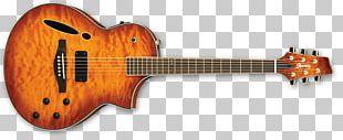 Sunburst ESP Guitars PRS Guitars Electric Guitar PNG