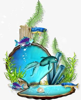 The Underwater World PNG