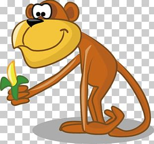 Hippopotamus Animal Monkey Illustration PNG