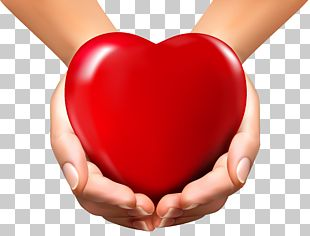 Heart In Hand Heart In Hand PNG