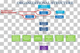 Organizational Chart Board Of Directors Management Chief Technology Officer PNG