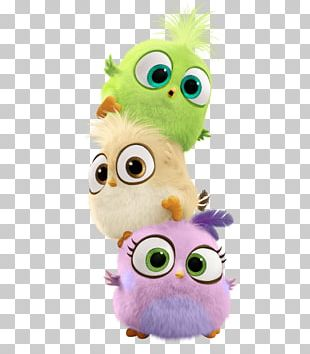 Angry Birds Movie PNG