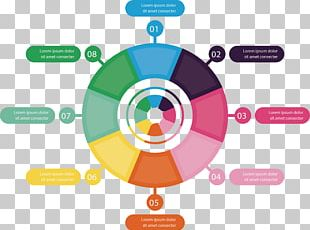Circle Chart Infographic PNG