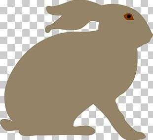Snowshoe Hare Easter Bunny Rabbit PNG