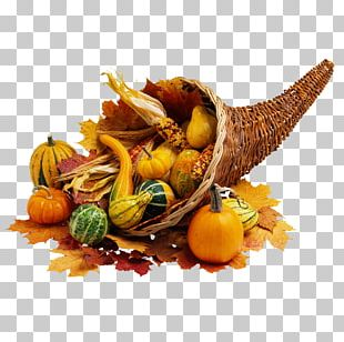 Thanksgiving Dinner Public Holiday Cornucopia Thanksgiving Day PNG