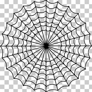 Spider Web Coloring Book Child Drawing PNG