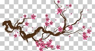 Cherry Blossom Drawing Paper Painting PNG