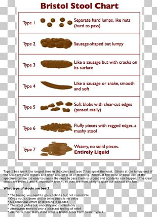 Bristol Stool Scale Human Feces Fecal Incontinence Health PNG
