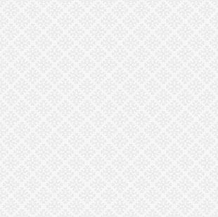 Continental Light Gray Background Shading PNG