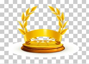 Safety Award Icon PNG