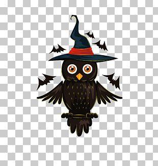 Owl Halloween Jack-o'-lantern Illustration PNG