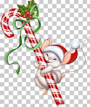 Candy Cane Christmas Lollipop PNG