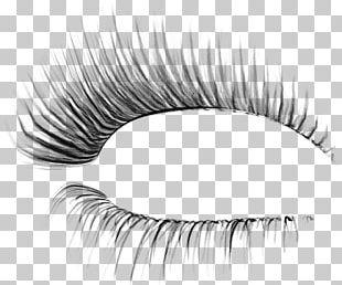 Eyelash Extensions Cosmetics Beauty Parlour PNG