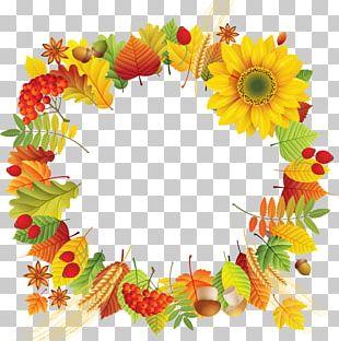 Floral Design Autumn Leaf Color PNG
