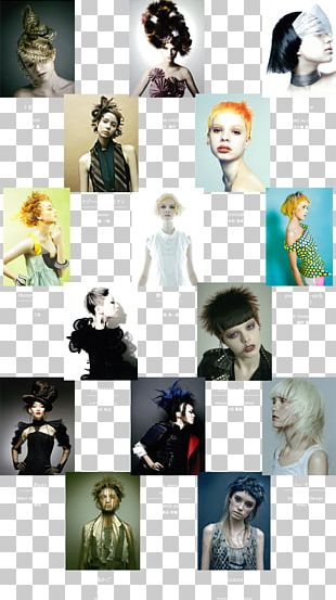 Collage Photomontage Fur PNG